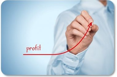 Profitable Growth Optimization